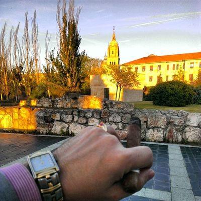 DIStylelife Cigar MomentoHabano