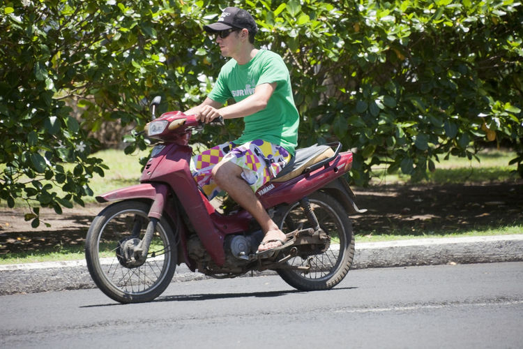 Young Man Riding Motor Bike - Rarotonga, Cook Islands, Polynesia, Oceania Adult Bike Cap Casual Caucasian Close-up Cook  Driving Freedom Handlebar Holding Islands Journey Man Moped Motion Motor Motorbike Motorcycle Nature Outdoors Pacific People Polynesia Portrait Profile Rarotonga Riding Road Scooter Serious Shorts Sitting Slim Speed Street Summer Sunglasses T-shirt Tourism Tourist Traffic Transportation Travel Tropical Tropics Vacation Vehicle Yamaha Young Mode Of Transportation One Person Day Ride Plant Young Adult Casual Clothing Side View Men Full Length Tree