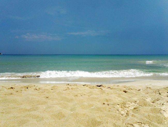 The sea Bird Water Wave Sea Swimming Beach Sand Horizon Water's Edge Sky FootPrint Island Sandy Beach Shore