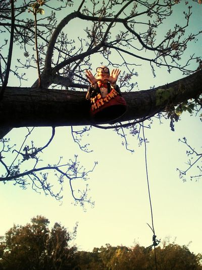 what is the old Six Flags man doing up a tree