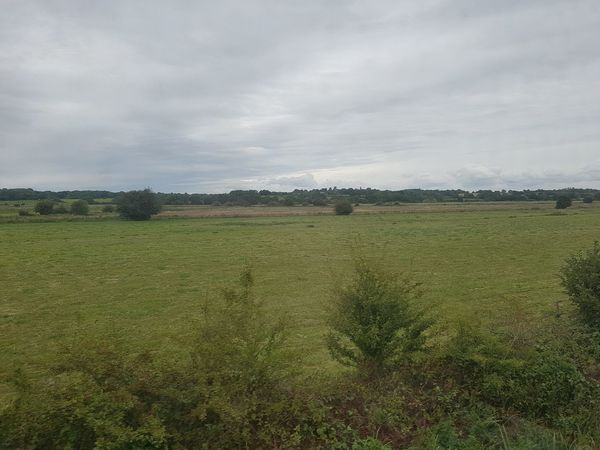 Travelling through the Countryside on the K&ESR 2017 2017 2017 Year 2017 Photo England, UK K&ESR K&ESR Railway Kent UK Tourist Attraction  Travel Travel Photography United Kingdom Beauty In Nature Day Field Kent England Landscape Nature No People Outdoors Scenics Sky Tranquility Travel And Tourism Travelphotography Tree