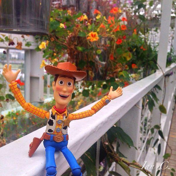 Flower Teatime Woody Toys ?花香四溢?舒適空間☺️