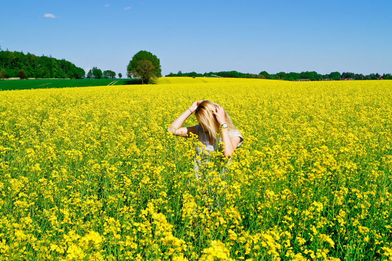 Woman standing amidst yellow flowering field against clear sky