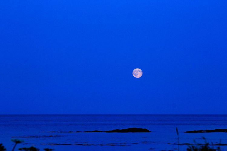 Moon Moonrise