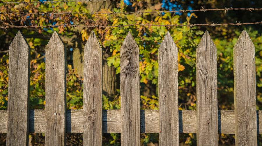 Wooden fence, Background Fence Boundary Barrier Wood - Material Protection Safety Security No People Picket Fence Day Plant Nature Focus On Foreground Close-up Side By Side Selective Focus Sunlight Land Tranquility Outdoors Wooden Post