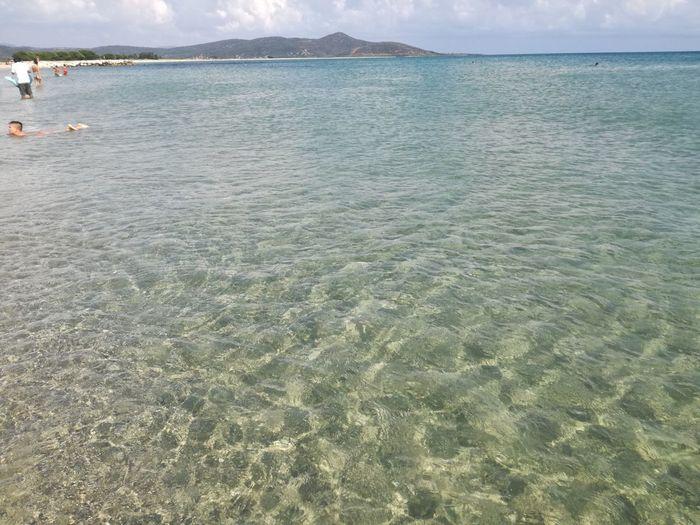 Water Sea Beach Sand Tree Sky Calm Scenics Tranquility Tranquil Scene Non-urban Scene