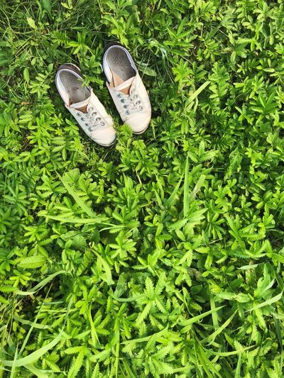 High angle view of shoes on field