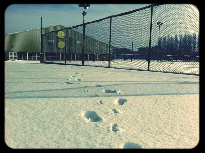 Snow Winter White By CanvasPop Nottingham Tennis Centre Nottingham Tennis Centre Footsteps