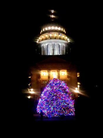 Christmas Tree Merry Christmas!