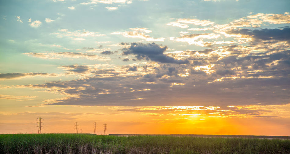 Beauty In Nature Cloud - Sky Environment Field Fuel And Power Generation Idyllic Land Landscape Nature No People Non-urban Scene Orange Color Outdoors Plant Power Supply Rural Scene Scenics - Nature Sky Sugar Cane Sunset Tranquil Scene Tranquility