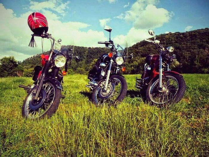 Biker family :-) Bike , Bikes , Travel , Yamahavirago , Mz , HondaShadow