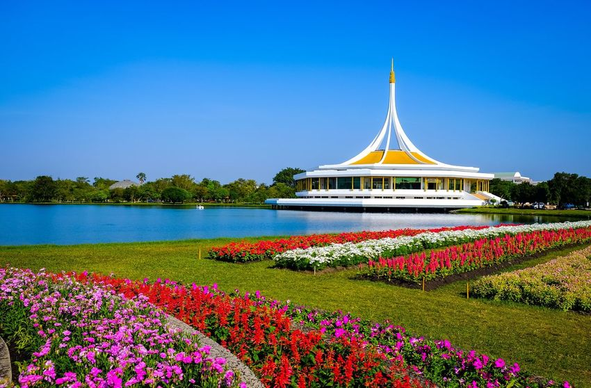 Garden Flowers Rama 9 Flower Water Nature Clear Sky Beauty In Nature Outdoors Day Growth No People Blue Built Structure Plant Travel Destinations Freshness Sky Scenics Architecture Tree