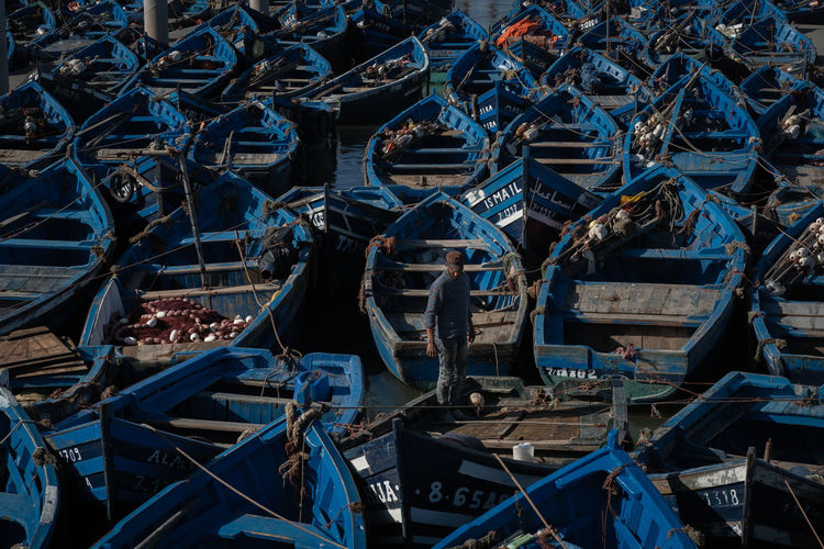 Blue Boats of Essaouira Essaouira Essaouira Fishing Boats EyeEmNewHere Morocco Blue Boat Boats Fish Fishing Industry Full Frame High Angle View Large Group Of Objects Mode Of Transportation Nautical Vessel One Person Outdoors Port Seaport Transportation The Traveler - 2018 EyeEm Awards