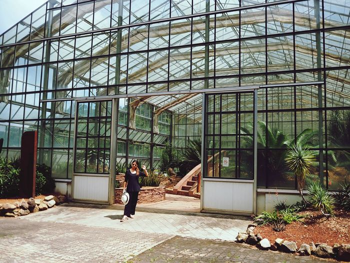 Architecture Built Structure Building Exterior Glass - Material Day Building One Person Full Length Real People Nature Plant Lifestyles Men Outdoors Sunlight Women Pattern Side View Modern
