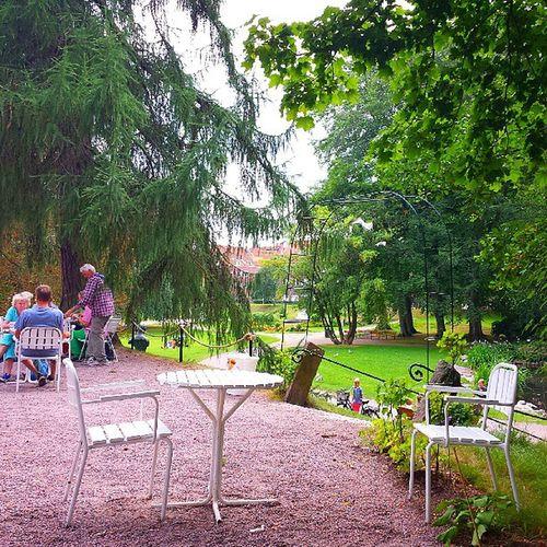 Caf é Rotundan Park City halmstad halland sommar semester norrekatspark