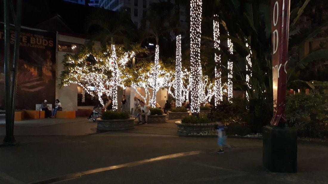 Hanging Celebration Christmas Lights Tree Christmas Decoration Christmas Outdoors No People Eyeemphotography