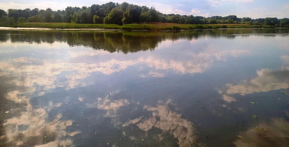 clouds in the water Beauty In Nature Day EyeEm Best Shots EyeEm Gallery EyeEm Nature Lover EyeEmNewHere Lake Lake Tisza Lake View Nature No People Outdoors Place Of Heart Reflection Scenics Sky Standing Water Tranquil Scene Tranquility Tree Water