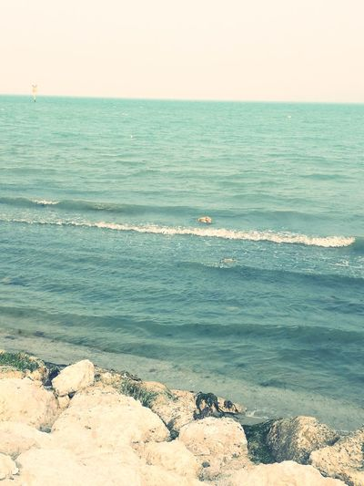 Seascape Sea Horizon Over Water Sand Water Nature Outdoors Beauty In Nature Wave Sea Life No People