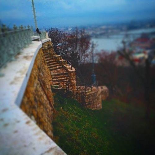 Budapest Ilovebudapest Winter Clouds Landscape Cityscape Urban Urbanscape Gellerthill Gellerthegy Statue Libertystatue  Bridge Bricks Stairs Danube Duna Riverside River