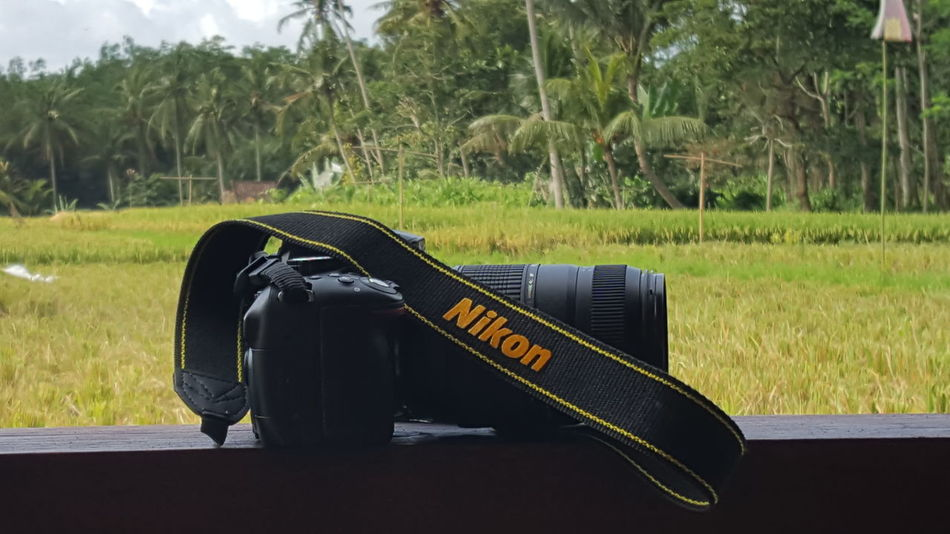 Travel Vacations No People Outdoors Nature Catch The Moment Padi Field Day