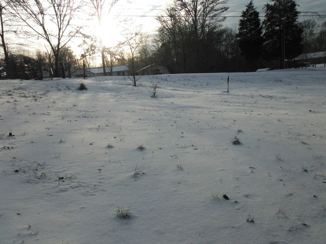 Cold Temperature Day Nature No People Outdoors Sky Snow Winter