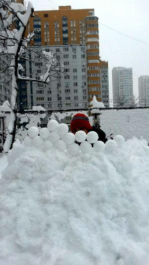 Winter Snow ❄ Snowballs