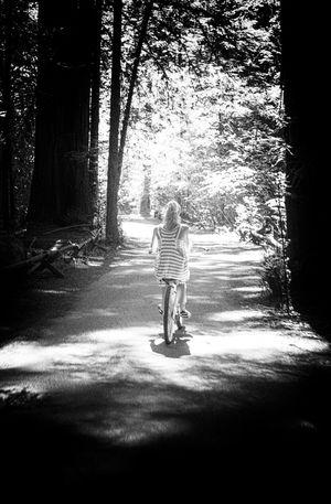 Redwood Forest Leicam9p Livewhatyoulove Surpriseyourself Natalienesser First Eyeem Photo