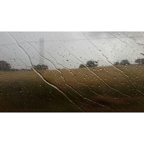 Bir Yağmur Yağar Aniden