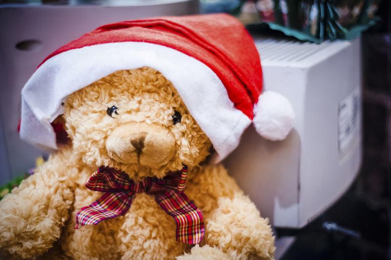 Close-Up Of Teddy Bear With Santa Hat At Home