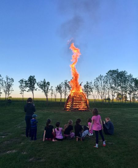 Burning Of Witches Children Real People Plant Tree Rear View Nature