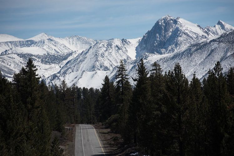Highway 395 California California Fun Travel Road Trip Mountain Snow Plant Tree Winter Beauty In Nature