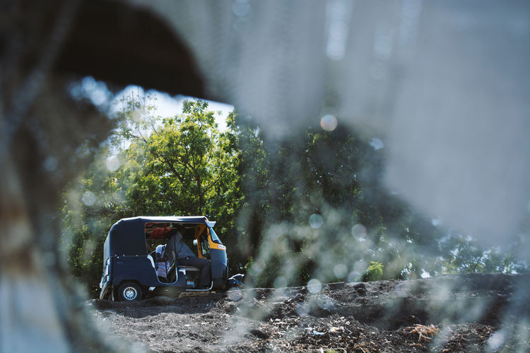 Man in car by road against trees