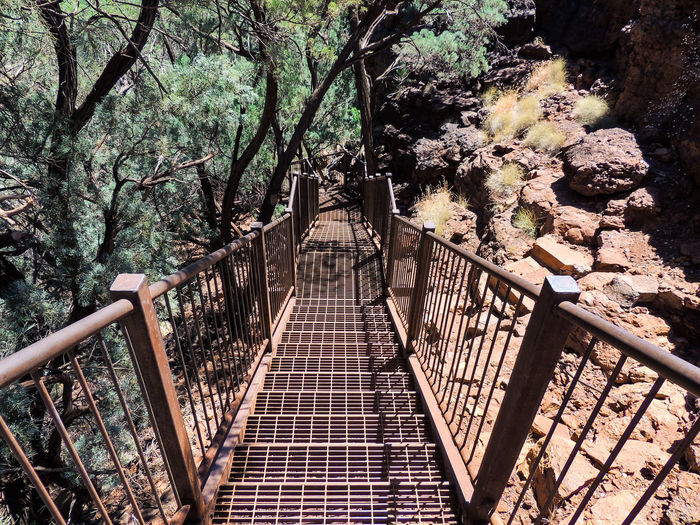 High angle view of footbridge amidst trees