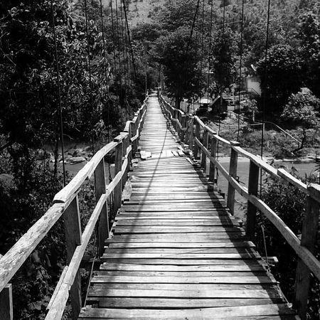 First Eyeem Photo Chiangrai EyeEm Thailand Thailand Dark Photography EyeEm Nature Lover Nature_collection Smartphonephotography