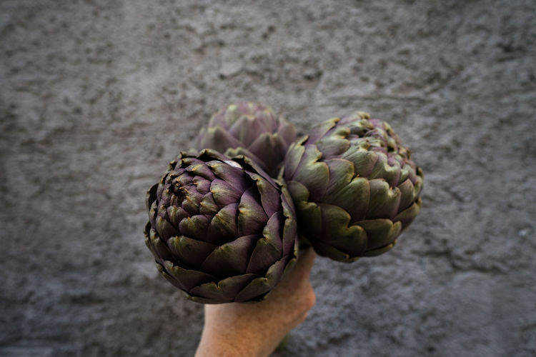 Cropped hand holding artichokes