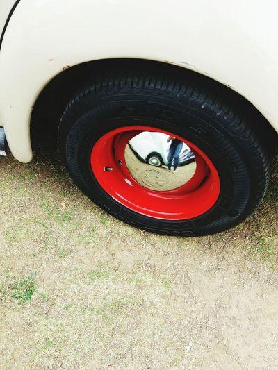 Wheel Wheels Beetle Cars Car Colorful Colour Of Life Taking Photos Enjoying Life Beetle Collection