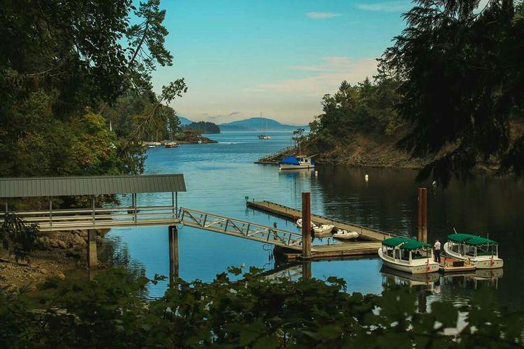 Sail Away Learn & Shoot: Layering Vancouver Island British Columbia Canada