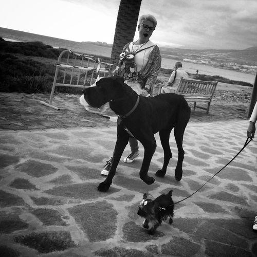 Life In Motion Blancoynegro Beach Street Flaneur Street Life Streetphoto_bw Monochrome NEM Black&white Blackandwhite IPhoneography Streetphotography Streetphotography_bw Walking Around NEM Street Enjoying Life AMPt - Street High Contrast