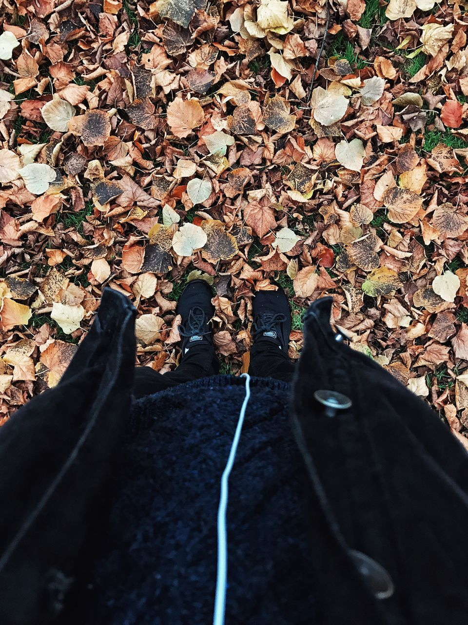 autumn, leaf, change, nature, abundance, day, outdoors, real people, men, beauty in nature, one person, close-up, people