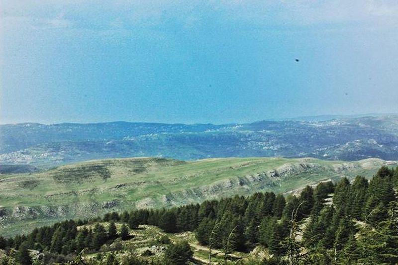 Lebanon ShoufReserve Barouk Cedars Forest Nature Instagood Picoftheday Bluegreen Landscape Chouf Livelovechouf LiveLoveLebanon