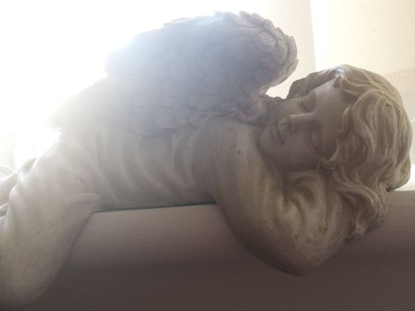 Angel Wings Sunshine The Purist (no Edit, No Filter) Peace Sleeping Religion Angel