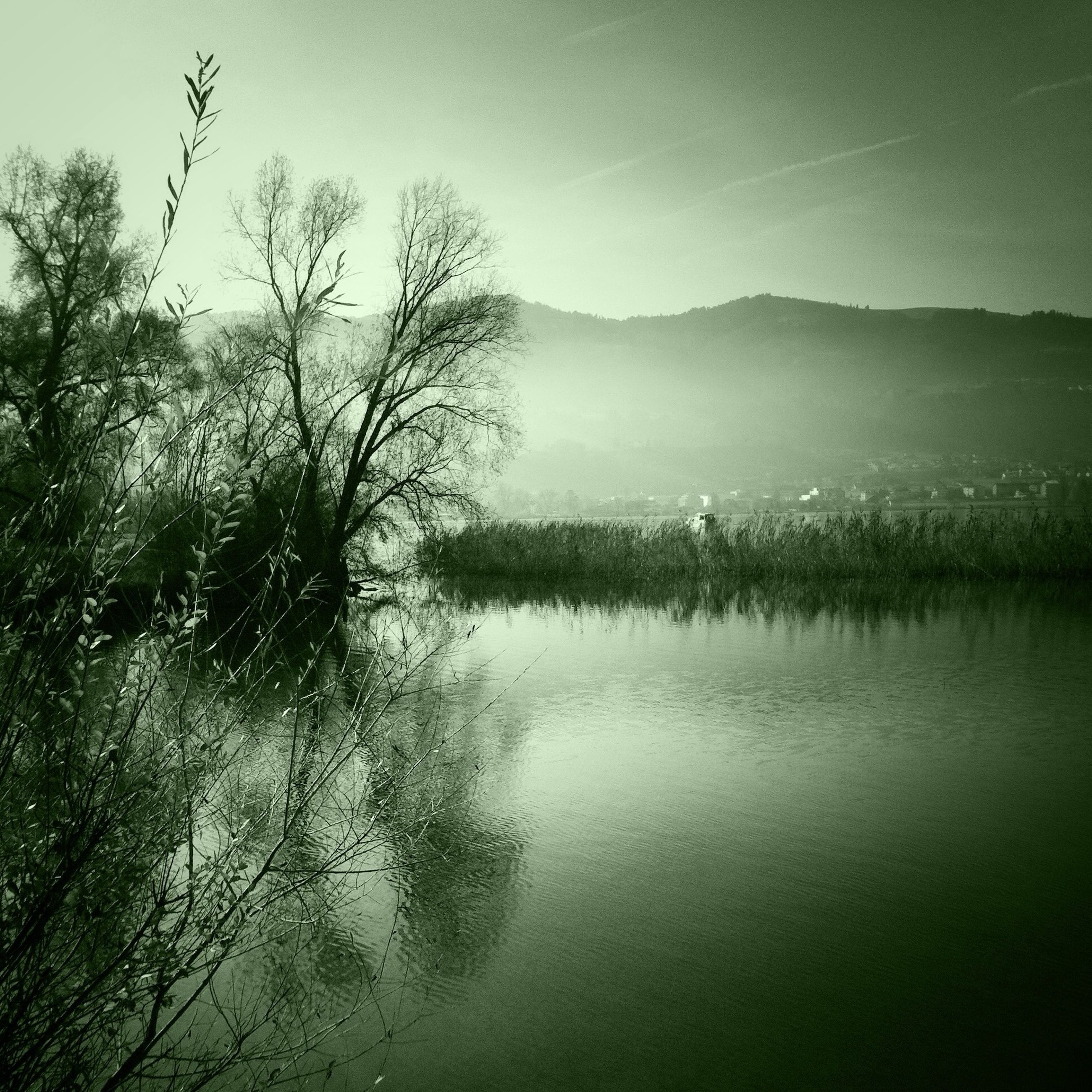 water, tranquil scene, tranquility, lake, tree, scenics, reflection, beauty in nature, waterfront, nature, mountain, bare tree, sky, branch, idyllic, river, non-urban scene, landscape, calm, countryside