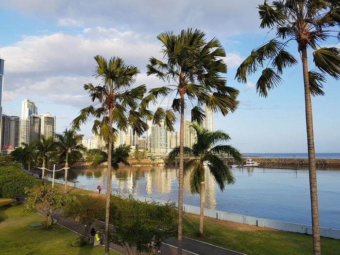 Panama City... Sky City Water Reflection Skyline The Week On EyeEm