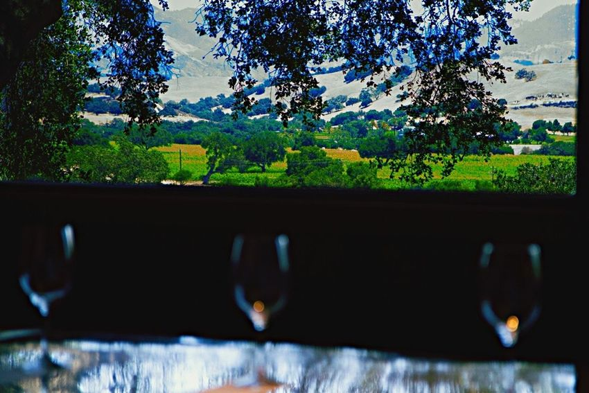 Hanging Out Wine Tasting Relaxing Winery Wine Drinks EyeEmBestPics EyeEm Best Shots Check This Out Popular Photos