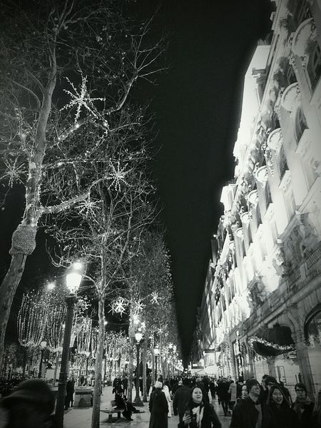 Champs-Élysées  Paris Christmas Lights Illumination Black And White Cities At Night The City Light