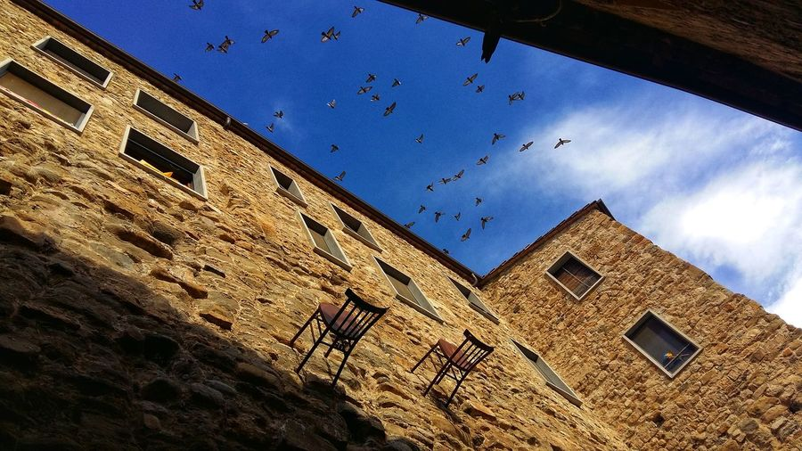 Amazing moment... Walk Travel SPAIN No Filter Travels Picoftheday Amazing Moments Architecture Sky Day Bird Flying