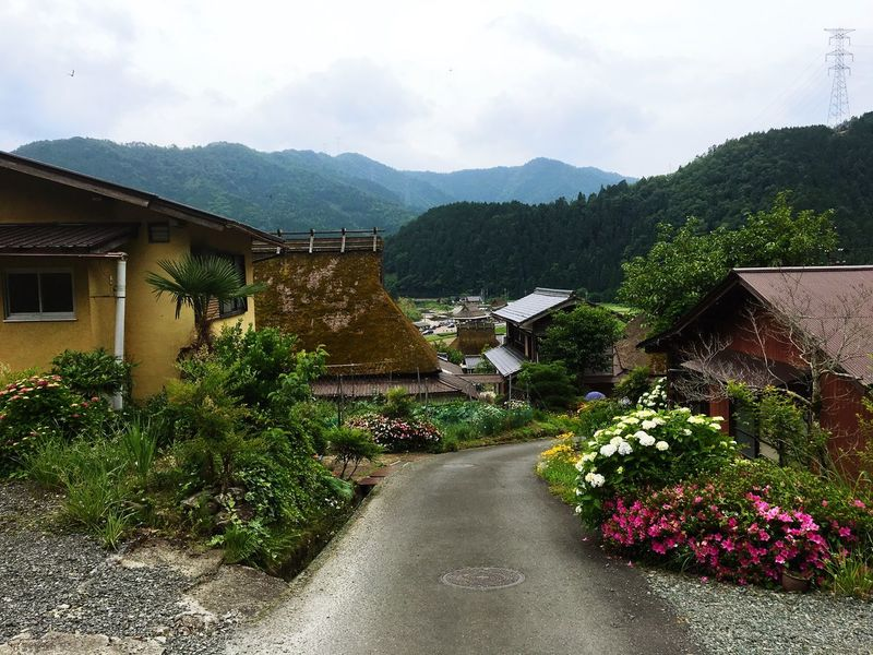 Mountain Plant Tree Architecture House Growth Building Exterior No People Sky Mountain Range Road Built Structure Nature Outdoors Beauty In Nature Scenics Day 茅葺屋根 かやぶきの里 京都 Kyoto