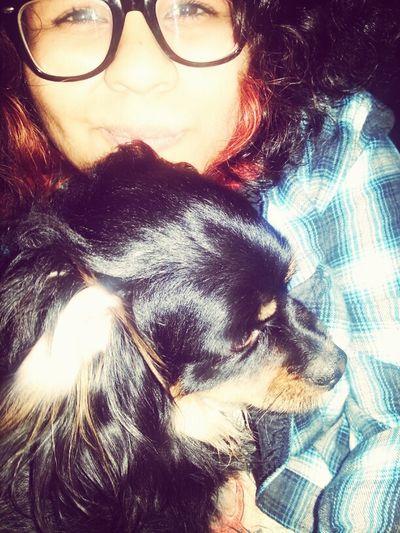 my mutt <3 Face Dog Weird Mutt