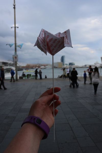 Real People Focus On Foreground Sky Human Hand Outdoors Close-up Human Body Part Paper People Building Water Barcelona Port Flower Rose🌹 The Street Photographer - 2017 EyeEm Awards EyeEmNewHere