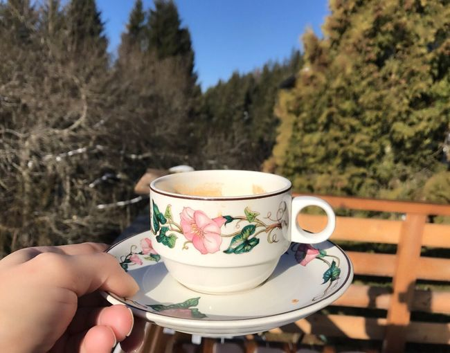 Tea Cup Tea - Hot Drink Food And Drink Holding Human Hand Drink Saucer Spring Flowers Human Body Part Beauty In Nature Spring Scenics Day Cup One Person Only Women Refreshment One Woman Only Close-up People Food Afternoon Tea Adults Only Freshness Adult